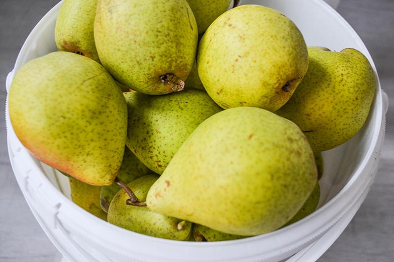 Apfel - Birnen Crumble