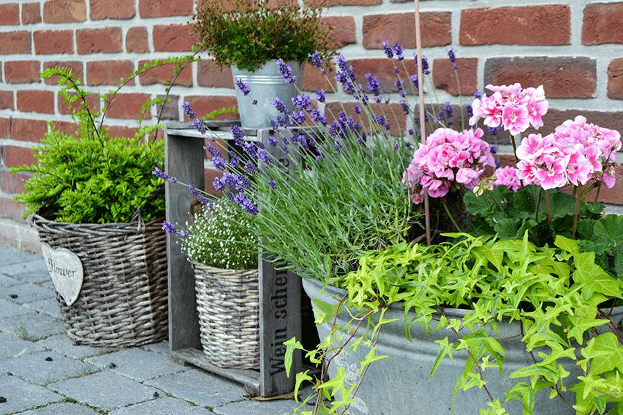 Gartendekoration im shabby vintagestil for Gartendekoration