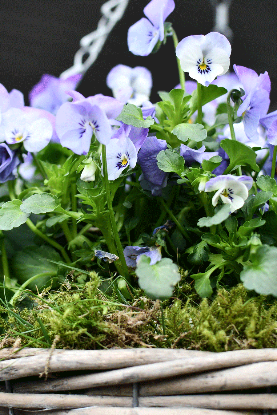 Osterdekoration für Garten und die eigenen 4 Wände