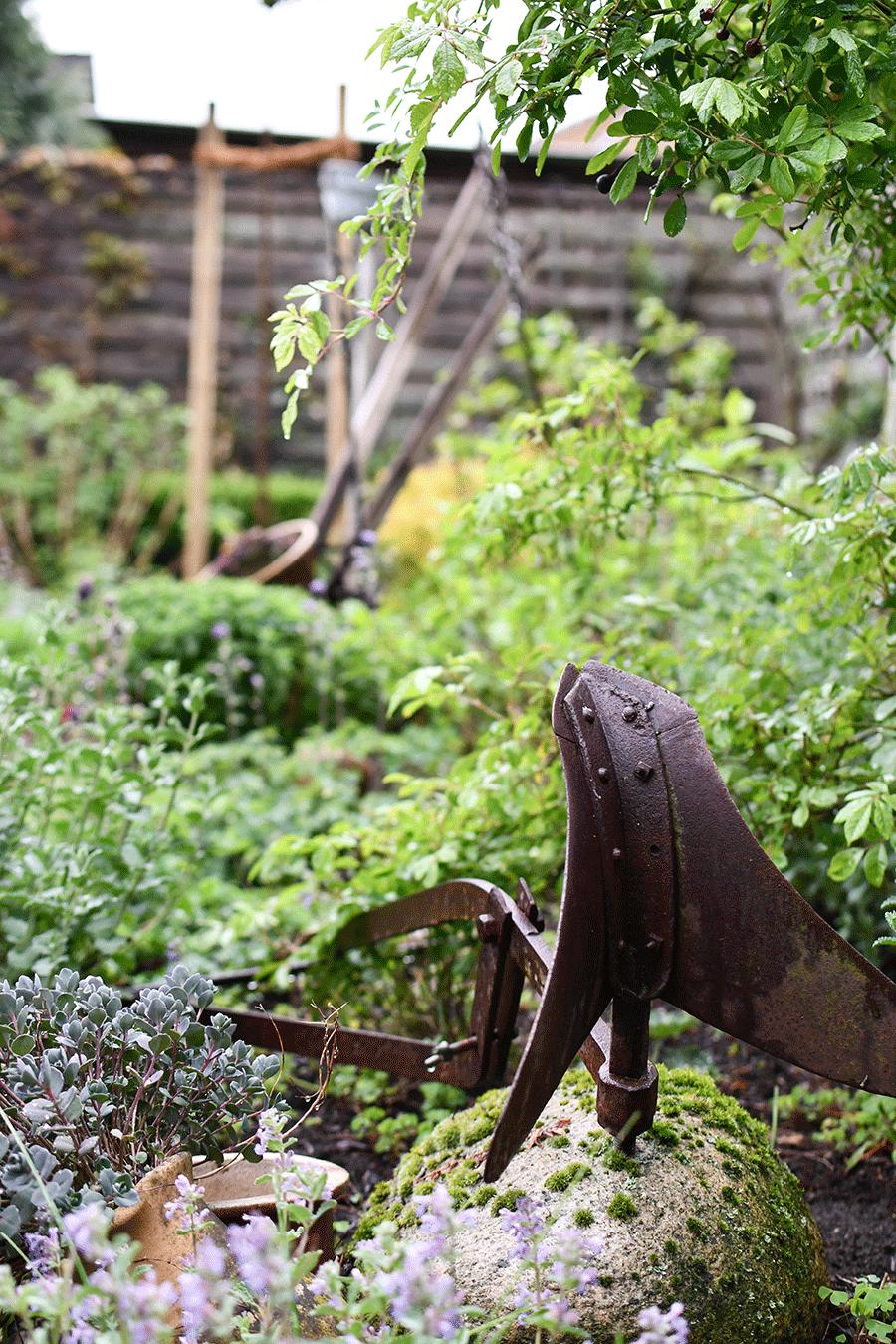 Der Gartenmonat Mai: Säen und Pflanzen