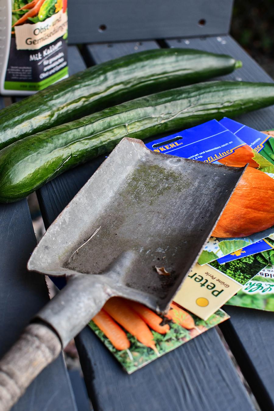 Hochbeet befüllen und bepflanzen - Tipps & Tricks