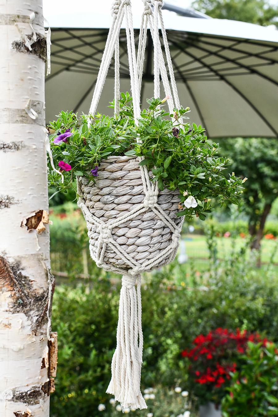 Blumendekoration im Schrebergarten