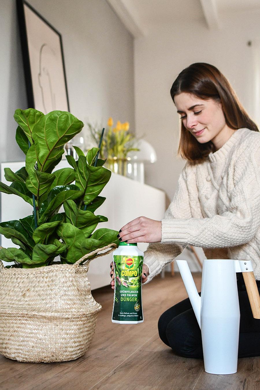 Pflanzen richtig pflegen - Tipps & Tricks